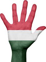 marketagent, és más magyar kérdőíves lehetőségek